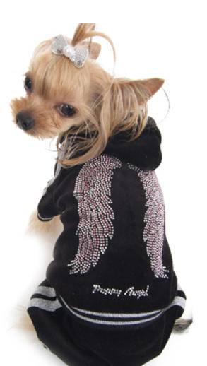 doggie clothes 1