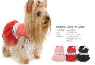 yorkie summer clothes 4